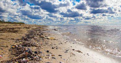 A mikroműanyagok jelentik a legnagyobb veszélyt