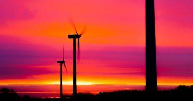 ENSZ-szervezet: a mezőgazdaságnak is tennie kell a káros üvegházhatású gázkibocsátás csökkentéséért